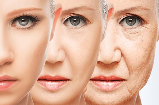 menstruação na pré-menopausa